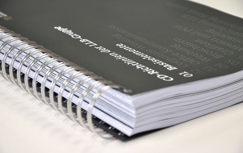 Arbeiten Referenzen Liechtensteinische Landesbank CD-Manual
